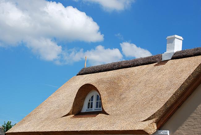 Rieten dak goed te verzekeren met de juiste keuzes
